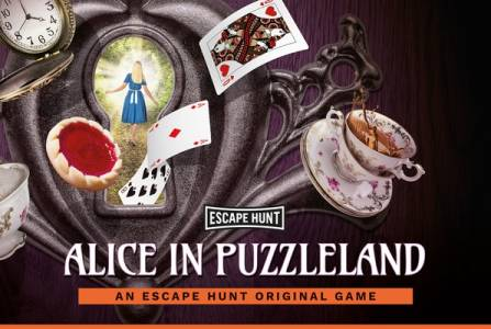 Alice in Puzzleland